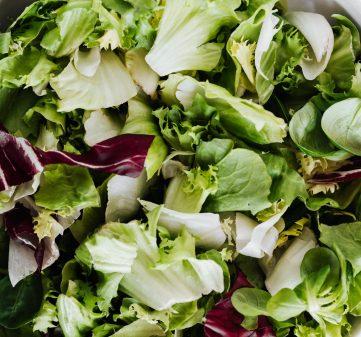 Сезонни зеленчуци през април